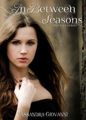 Blog Tour Review: In Between Seasons