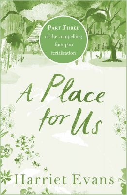 Review: A Place for Us Part 3