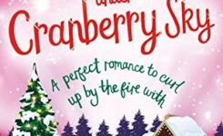 Blog Tour Review: Christmas Under A Cranberry Sky Blog Tour
