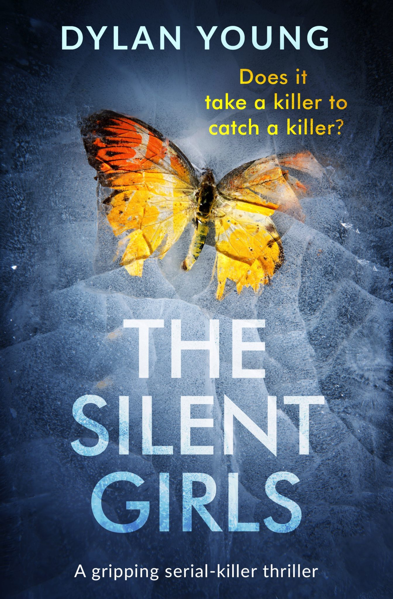 Blog Tour Review: The Silent Girls