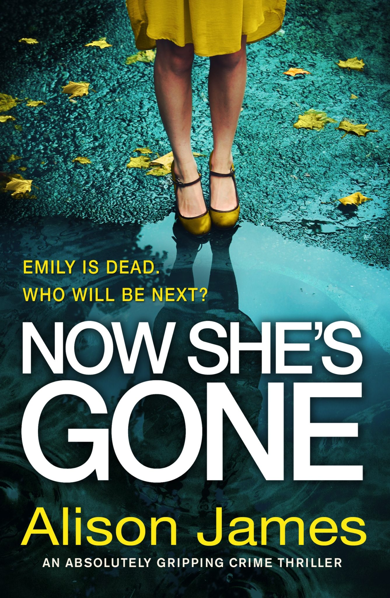 Now She's Gone  by Alison James