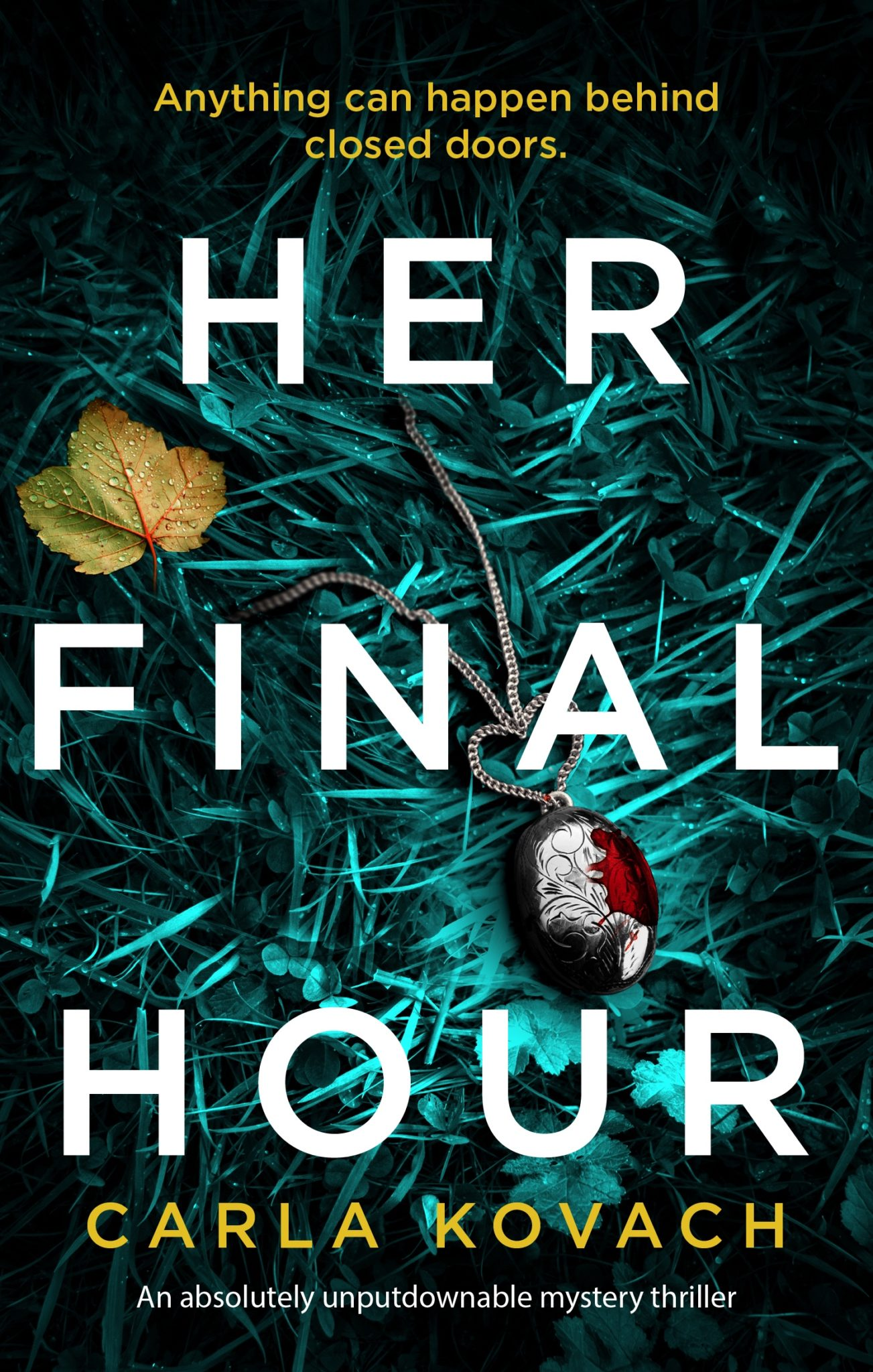 Blog Tour Review: Her Final Hour