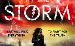 Blog Tour Review: The Girl in the Storm