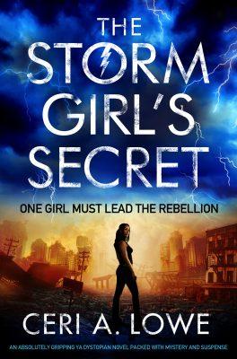 Blog Tour Review: The Storm Girls Secret