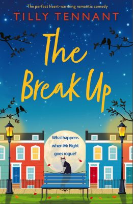 Blog Tour Review: The Break Up