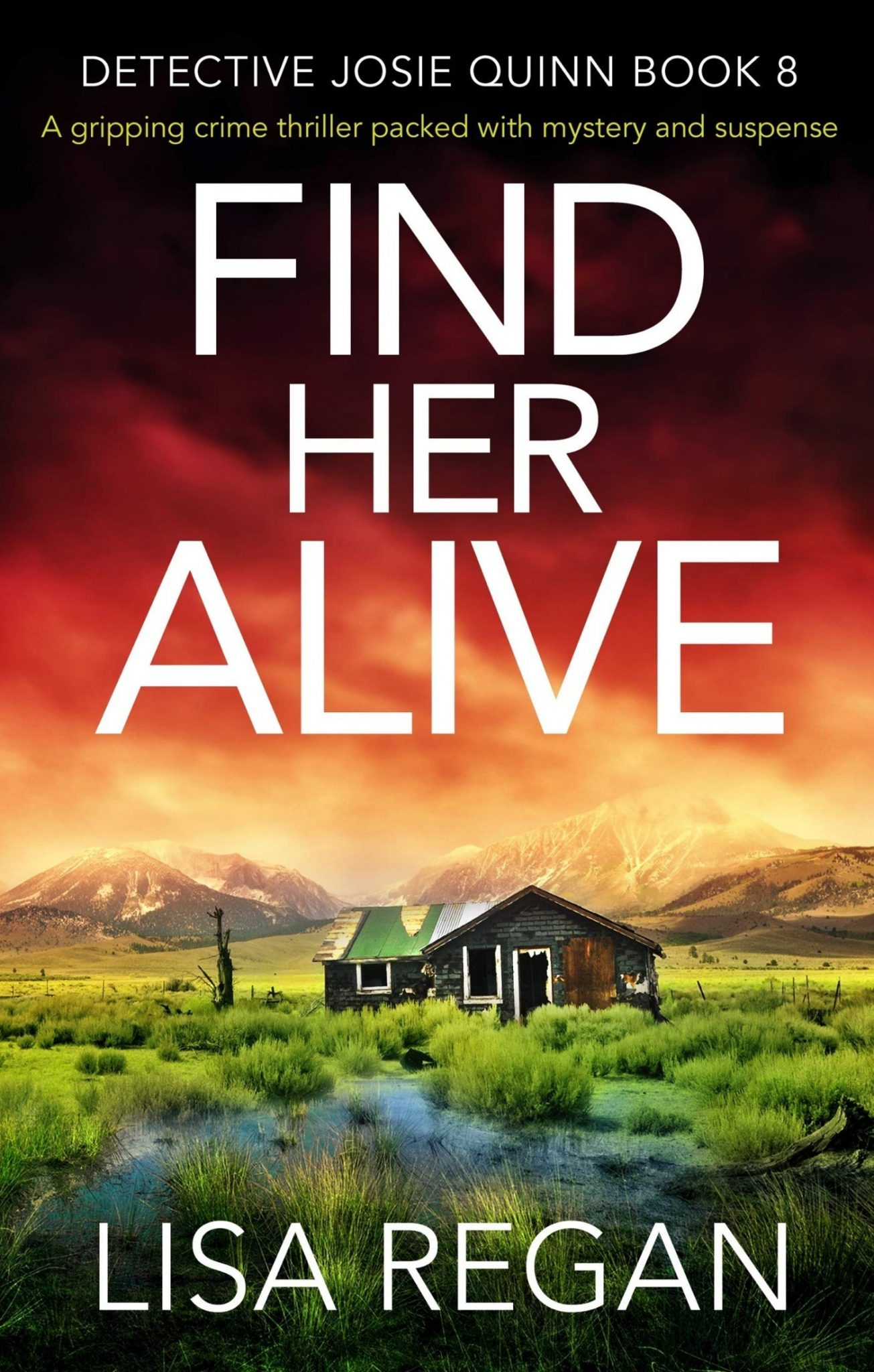 Find Her Alive by Lisa Regan