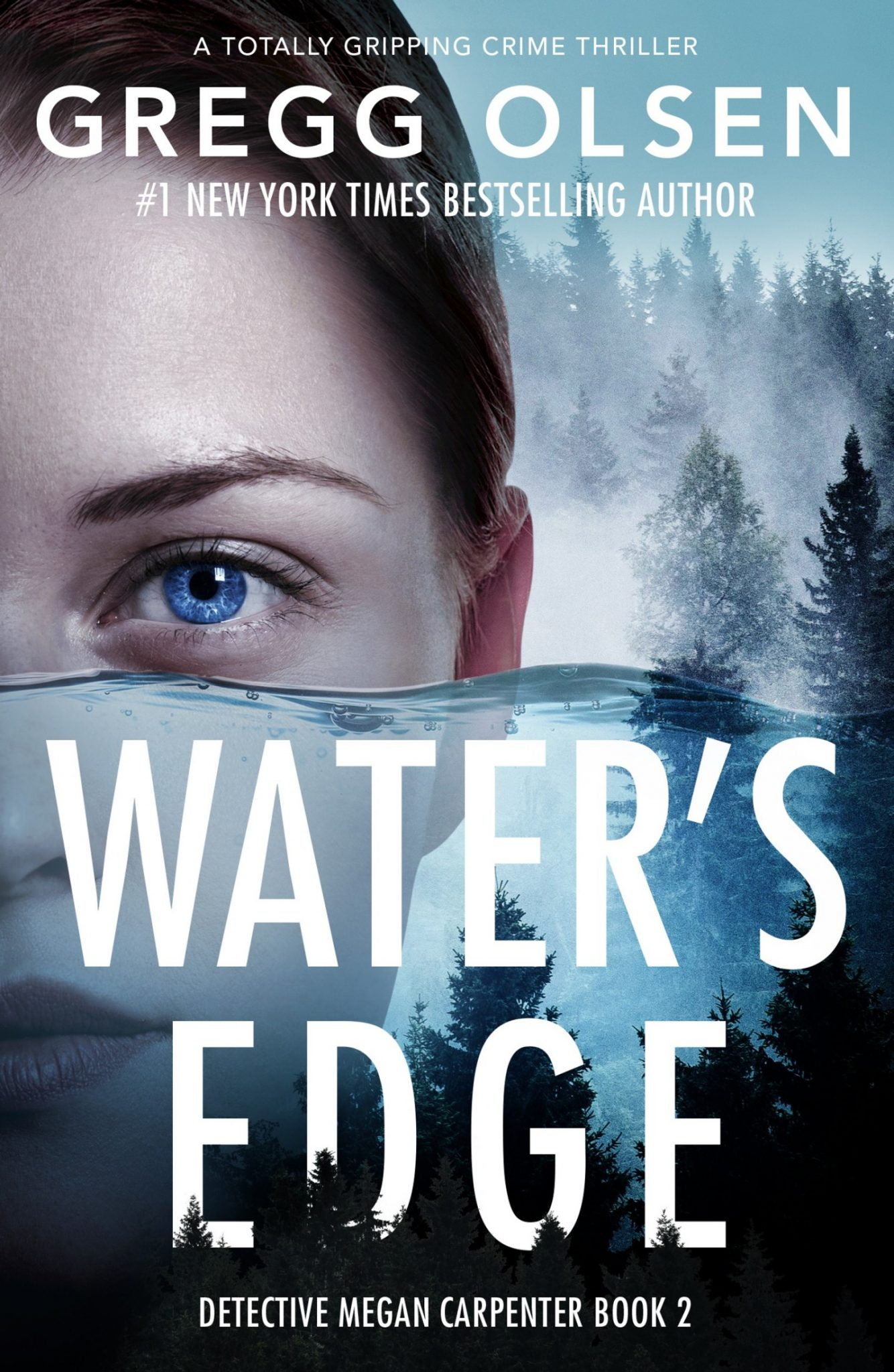 Water's Edge by Gregg Olsen