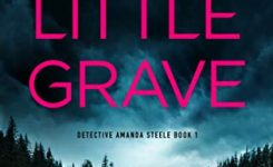 Blog Tour Review: The Little Grave