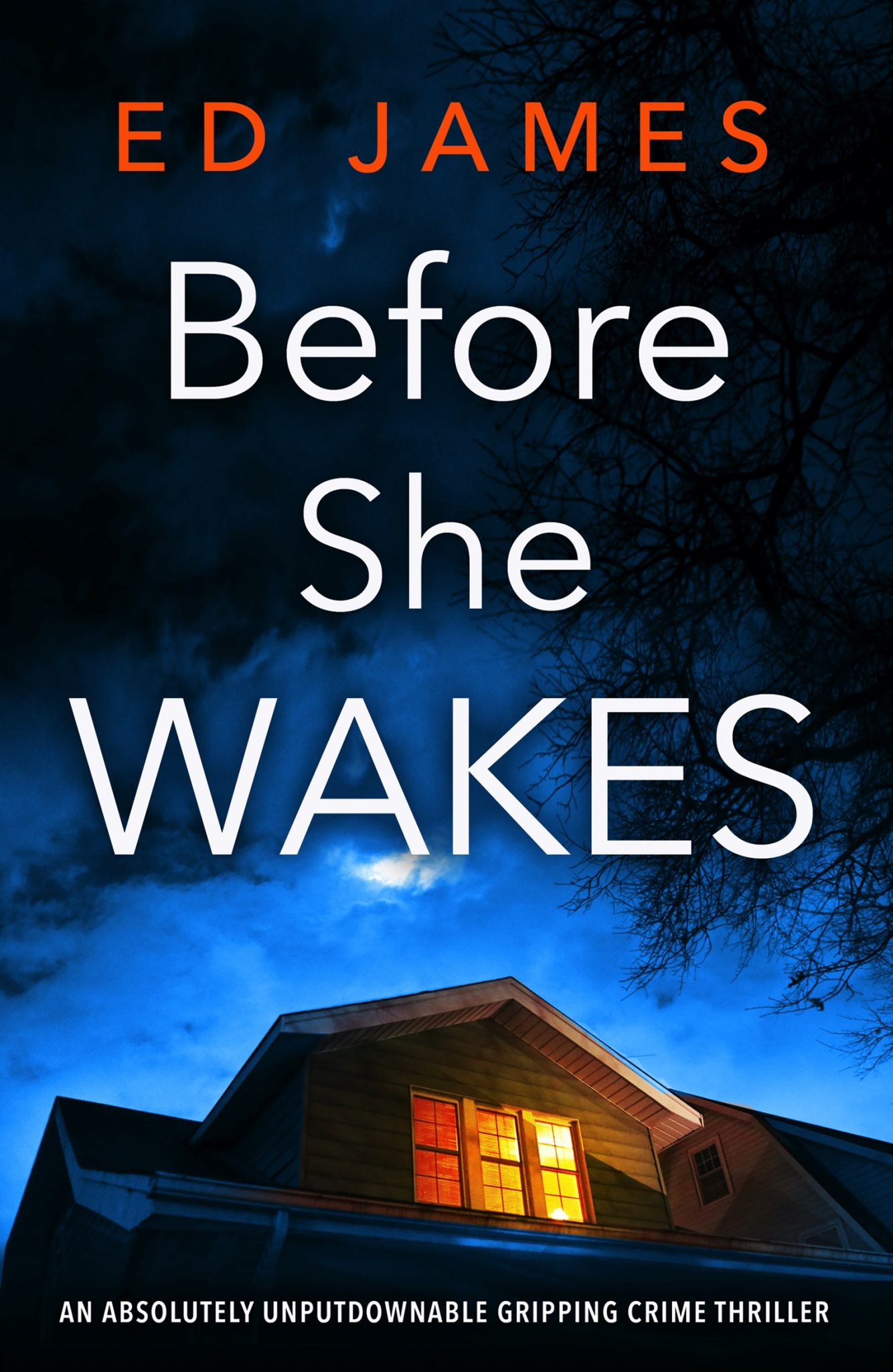 Before She Wakes by Ed James